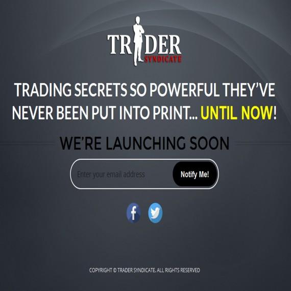 Portfolio Image 2 - Trader Syndicate