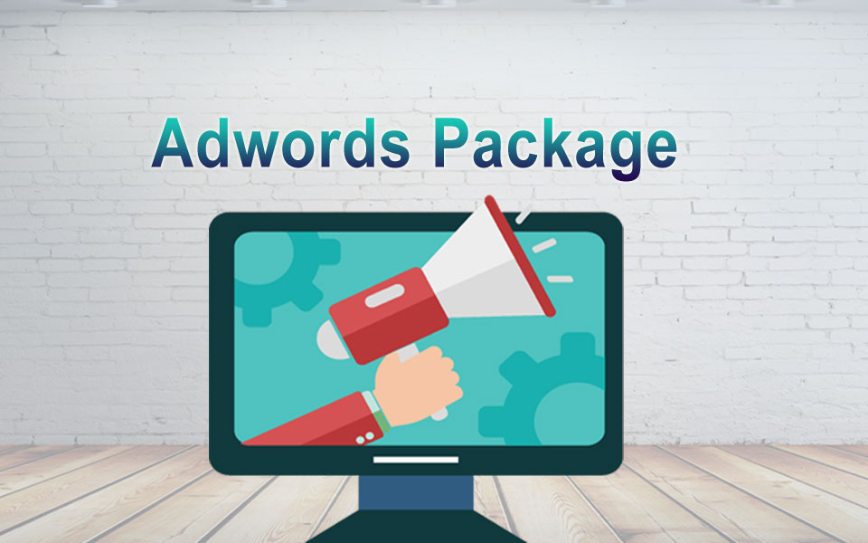 Adwords Package