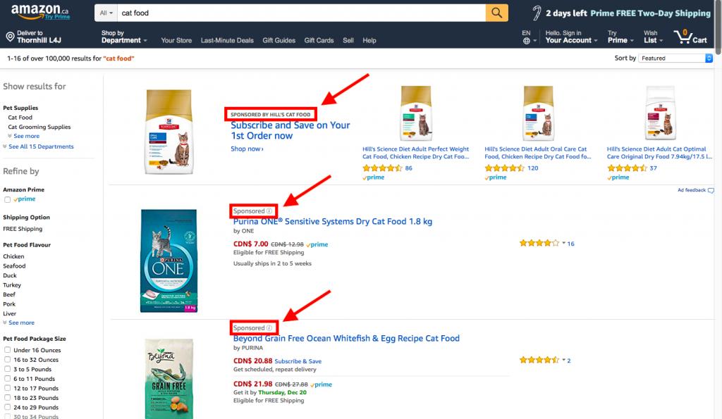 Example of Amazon Sponsored Ads